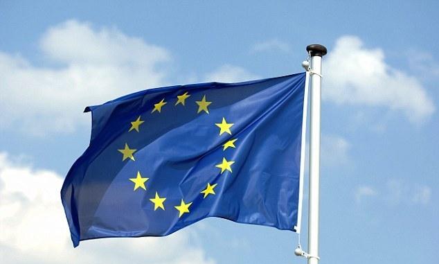 ევროკავშირი საქართველოს ადამიანის უფლებათა დაცვის სტანდარტების გაუმჯობესებაში დაეხმარება