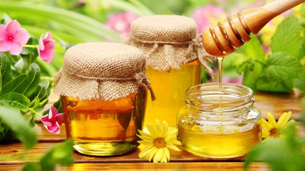 ევროპაში თაფლის გასატანად მეფუტკრეებს ლაბორატორია სჭირდებათ