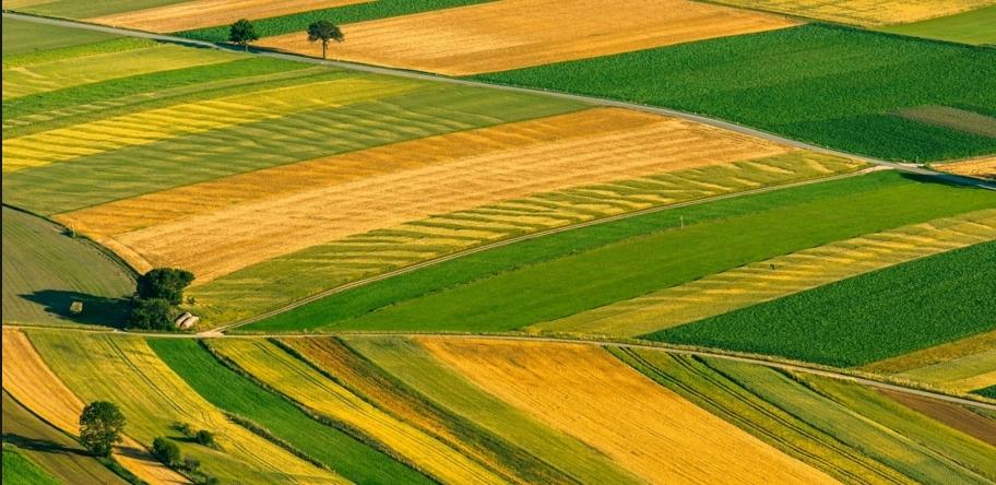 მიწის მფლობელობის მსურველებმა ნაკვეთები ხელახლა უნდა აზომონ და დაირეგისტრირონ