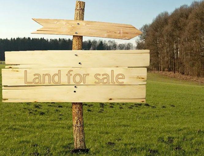 უცხოელებისთვის  მიწის  რეგისტრირებაზე  დაწესებული  შეზღუდვები  ქვეყნის ეკონომიკას შემოსავალს აკარგვინებს