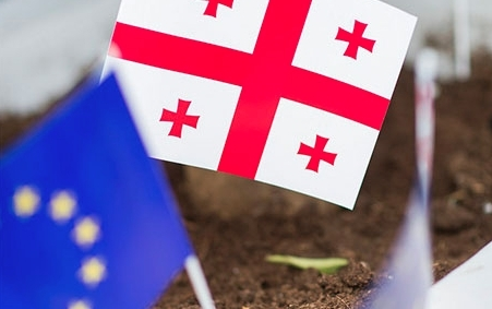 """""""ევროკავშირის დახმარების შედეგები ხალხმა უნდა იგრძნოს""""- ლორენს მერედითი"""