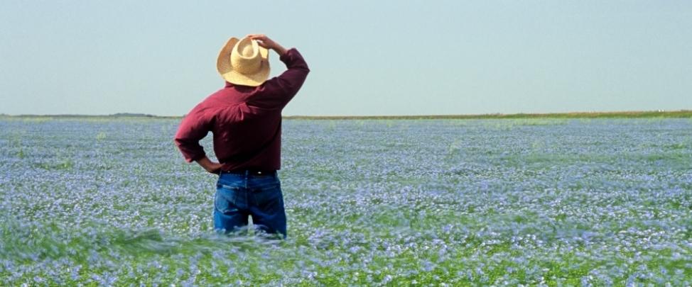 Новые стандарты, отсутствие доступа к рынку и финансам - новые головоломки для фермеров и политиков