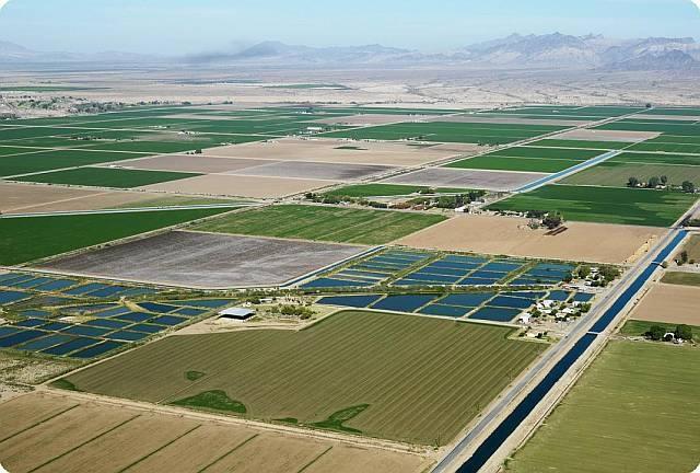 სოფლის მეურნეობაში მწარმოებლურობის ზრდა დაუმუშავებელი მიწების ათვისებითაა შესაძლებელი