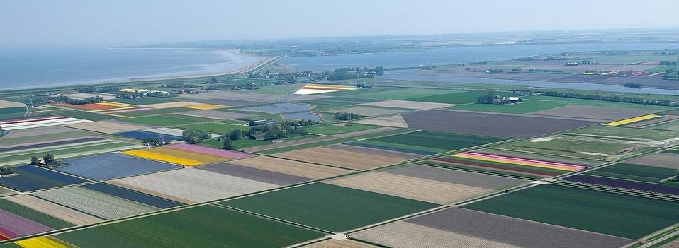 მიწის კონსოლიდაციის  დასავლეთ და აღმოსავლეთ ევროპის მოდელებმა ფერმერთა კონკურენტუნარიანობა გაზარდა