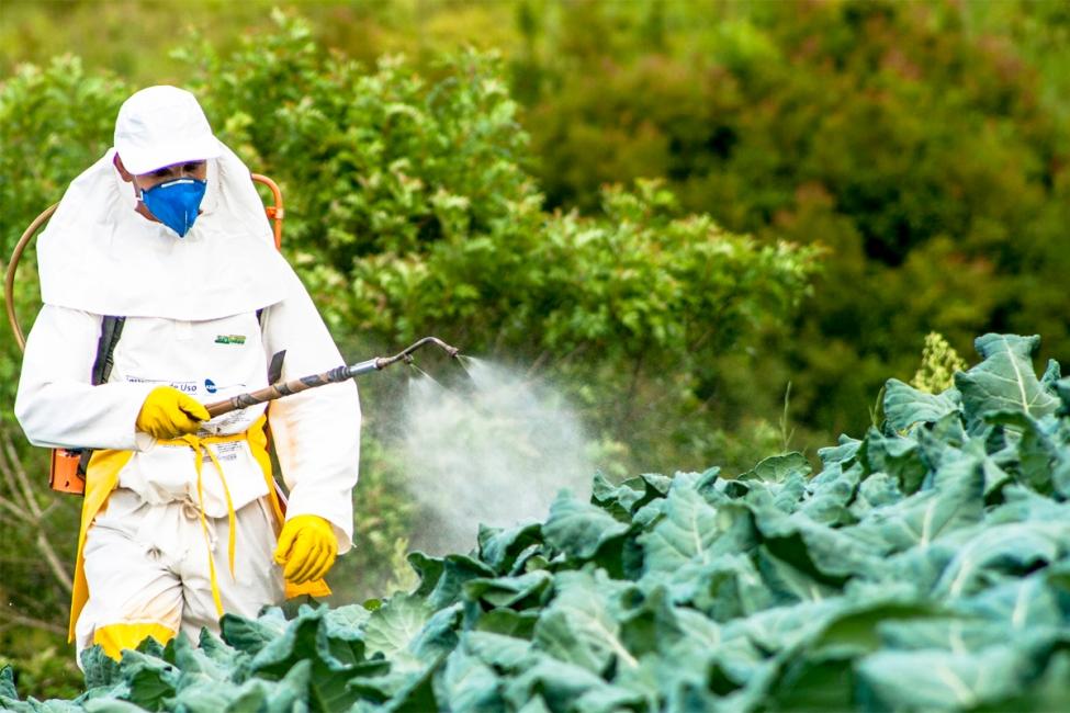 ფერმერები შხამქიმიკატების შეძენას შესაბამისი სერთიფიკატის გარეშე ვეღარ შეძლებენ