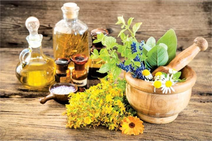 სამკურნალო მცენარეების საექსპორტო პოტენციალი