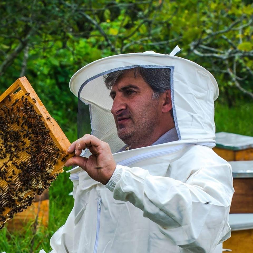 """""""თაფლის ფალსიფიცირების წინააღმდეგ სახელმწიფო არაფერს აკეთებს"""""""