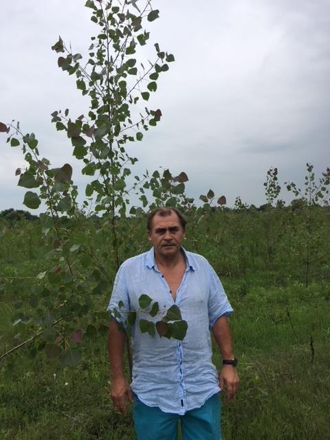დანიელი ინვესტორი აბაშაში იტალიური ვერხვის პლანტაციას აშენებს